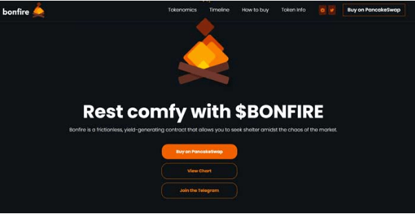Bonfire Coin Crypto 2021 (April) – Is It Safe to Invest?